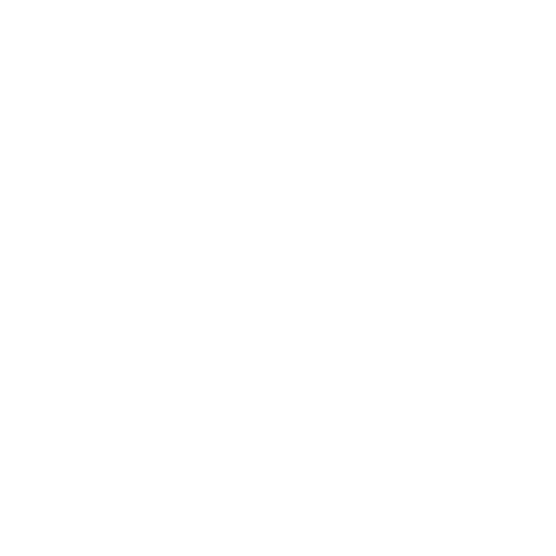 Electric Sky logo